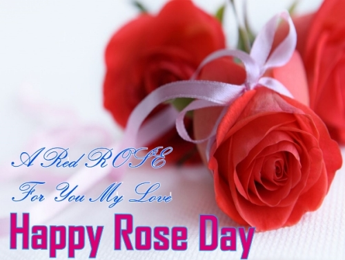 Top # 50+ Rose Day 2017 Images, HD Photos & Wallpapers